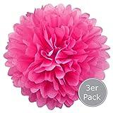 Pompom 3-er Set - Pompom als Deko zur Hochzeit und Party - Seidenpapier Pompom (Pink, 20 cm)