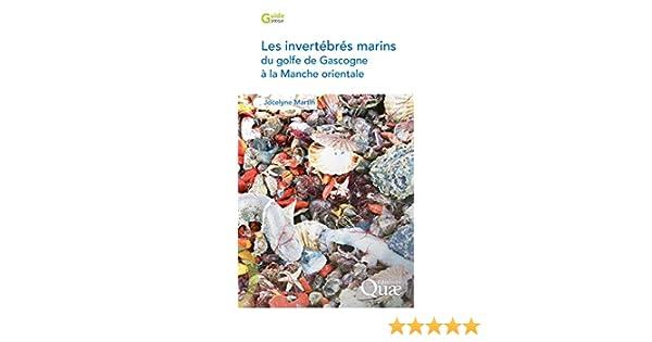 Les invertébrés marins du golfe de Gascogne à la Manche orientale (Guide pratique) (French Edition)
