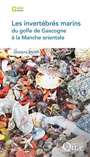 Les invertébrés marins du golfe de Gascogne à la Manche orientale (Guide pratique) par Jocelyne Martin