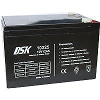 DSK, Batería Plomo Acido 12V 12 Ah, Ideal para Alarmas Hogar, Juguetes Eléctricos, Cercads, Balanzas, Negro