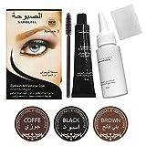 Cils à sourcils semi-temporaires Teinture pour les sourcils Teinte Gel pour les yeux Sourcils Kit de pinceaux pour mascara crème Imperméable Résistant à la sueur et longue durée