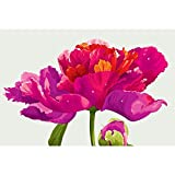 Gifts Flowers Food Best Deals - ArtzFolio Red Peony Flower - Medium Size 18.0 inch x 12.0 inch - UNFRAMED PREMIUM PAPER POSTER Wall Artwork Digital PRINT like HAND PAINTINGS : BEAUTIFUL INTERIOR Home Décor Photo Gifts & Decorative Paintings for Living, Drawing, Dining Room, Outdoor,