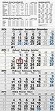 Baier & Schneider Monats-Wandkalender Viermonatskalender UWS, 4 Blöcke, 300 x 600 mm, grau