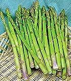 PLAT FIRM SEMI PLAT AZIENDA-Real semi di asparagi inferiori pressur, frutta e verdura, semi costosi semi di piante per la casa e giardino 10 pc/sacchetto