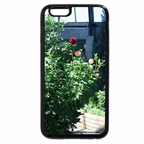iPhone 3S/iPhone 6Coque (Noir) une superbe Journée au jardin d'Edmonton 23