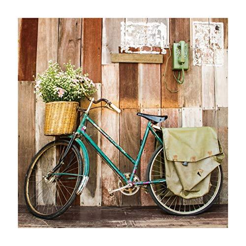 Cuadro Bicicleta Vintage Verde Lienzo decoración