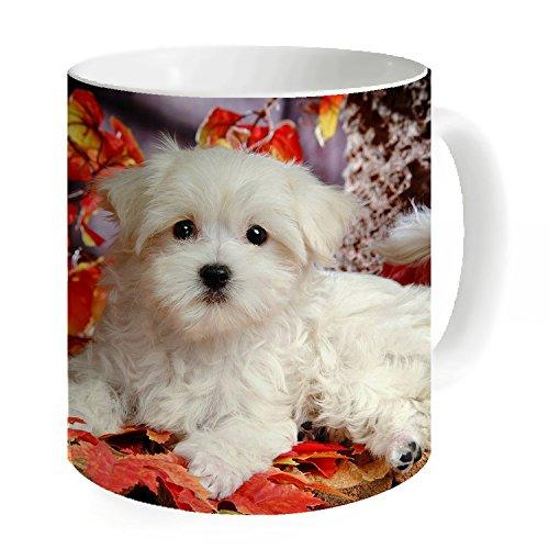 okoikiu piccolo cane bianco tazza tè tazza di caffè Tazza