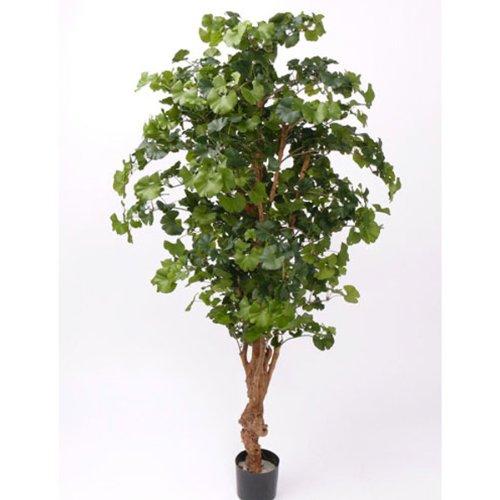 artplants – Kunst Ginkgo Baum, getopft, 1150 Blätter, grün, 160 cm – Künstlicher Ginko Baum/Deko Zimmerbaum im Topf