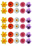 30 Gorgeous Mixed Spring Flower Selection Edible Wafer Paper Cake Toppers Decorations - Daffodil Daisy Gerbera Pansy by Top That