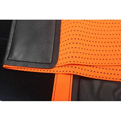 Zoom IMG-3 lychyyy cintura di sollevamento pesi