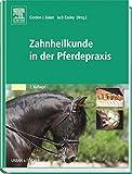 Zahnheilkunde in der Pferdepraxis