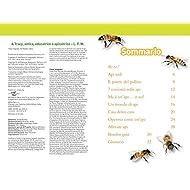 Api-Livello-3-Ediz-illustrata