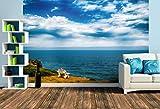 Premium Foto-Tapete Küste bei Hermanus - Walfisch Bay (verschiedene Größen) (Size L | 372 x 248 cm) Design-Tapete, Vlies-Tapete, Wand-Tapete, Wand-Dekoration, Photo-Tapete, Markenqualität von ERFURT
