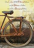 Kalender 2018 - »Das Leben ist wie Fahrrad fahren, um die Balance zu halten musst du in Bewegung bleiben.« (Albert Einstein): Wochenkalender - DIN A5 - Eine Woche pro Doppelseite - edition cumulus
