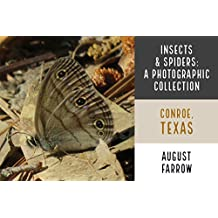 Insects: A Photographic Collection: William Goodrich (W.G.) Jones State Forest: Conroe, Texas (English Edition)