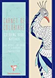 Clairefontaine 97506C Carta per Hobby Creativi, Blu Assortito