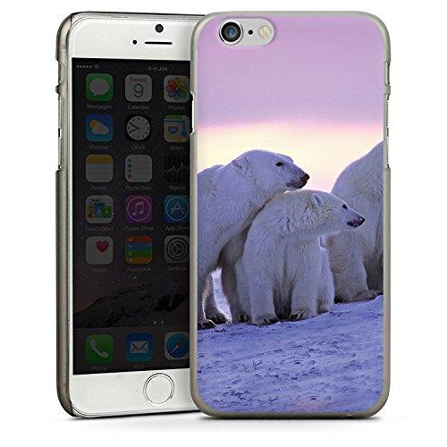 Apple iPhone 5s Housse étui coque protection Ours polaire Ours polaires Ours CasDur anthracite clair