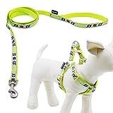 Touchdog Durable caja fuerte suave ajustable Nylon arnés del perro y la correa a juego para pequeño mediano Perros y cachorros de ideal para caminar formación