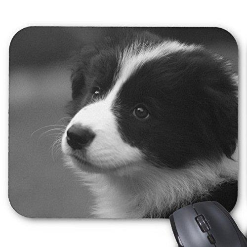border-collie-puppy-mouse-pad-con-animali-cane-gatto-motivo-cucciolo-di-golden-retriever-mouse-mouse