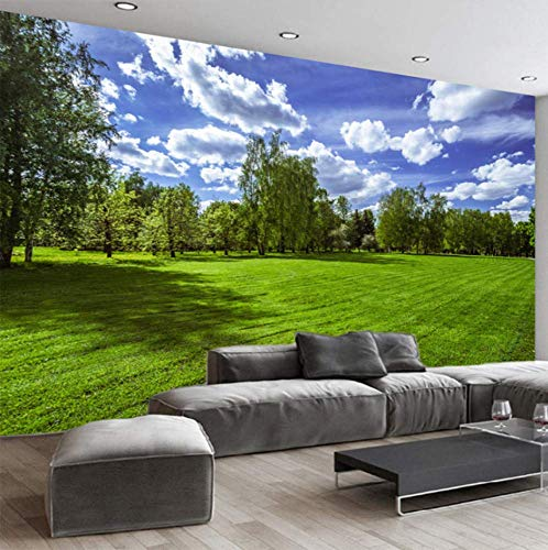 ATR Wallpaper Classic Blue Sky White Clouds Natur Landschaft Wandbilder Wandtuch Wohnzimmer Wohnkultur Papel De Parede, 430X300Cm (169.29X118.11 in) - Blue Classic Wallpaper