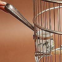 Cuchara de acero inoxidable con dispositivo de alimentación de pájaros de metal para loro, Macao, cacatúas africanas, de color gris, para periquitos y pájaros