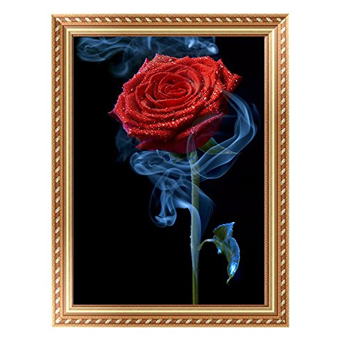 5D DIY Handmade Round Diamond Embroidery Painting - Saihui Red Rose Flower with Smoke Design Rhinestone Cross-Stitching Set Mosaic for Home Room Wall Decoration 28*40cm (A)