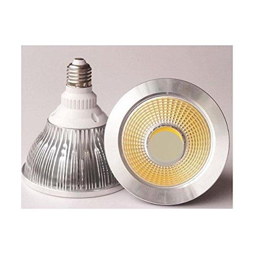 Proiettore LED PAR38E2720W 230V Bianco Neutro 1700lumen