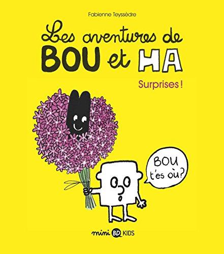 Les aventures de Bou et Ha, Tome 01: Surprises !