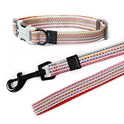 Hamate Multicolor winkte Hund Halsband und Leine Set