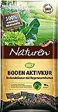 NATUREN Bio Activateur de Sol Naturel pour améliorer la fertilité du Sol avec Un Humus de Croissance nourrissant jusqu'à 200 m2, 10 kg