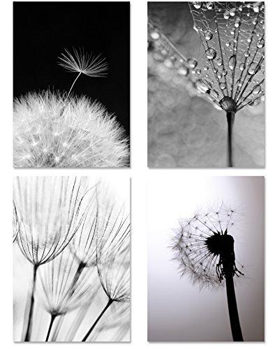 PICSonPAPER Poster 4er-Set PUSTEBLUMEN MONOCHROM, ungerahmt DIN A4, Kunstdruck, Poster, Dekoration, Wandbild, schwarz Weiss, Makroaufnahmen -