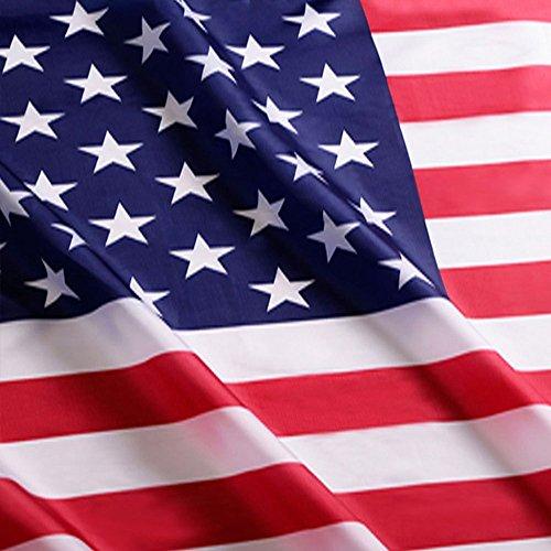 Anley? Zavala Flagge + Texas Flagge + Kommen und Take it Flagge + US Flagge, Polyester, usa, 4 X 6 Ft