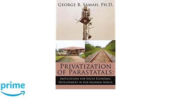 privatisation in sub saharan africa organisation for economic co operation and development