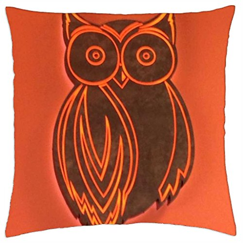 hooters-owl-throw-pillow-cover-case-18-x-18