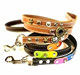 Superpipapo Leder Hunde-leine - Bestelle eine Leine Maßgemacht bei Zeparat Bestelltes Halsband oder Geschirr - Lesen Sie die Produkt Details!
