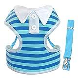 Breathable Hundegeschirr Weste Einstellbare Puppy Dog Harness Und Leine Set Für Kleine Mittelhunde Nylon Haustier Brustgurt Für Chihuahua Blue S