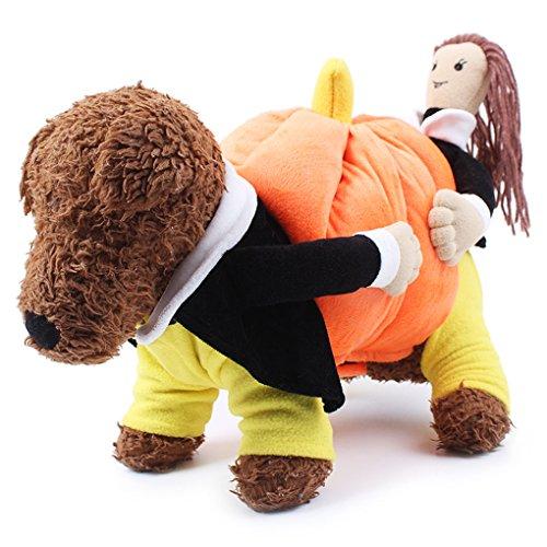 Quibine Haustier Hund Winter warm Kürbis Kostüm Kleidung Welpen Hoodie Halloween Cosplay Partei Erscheinen Bekleidung, Größe L (Länge: 12.2