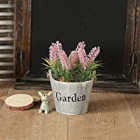 Simulación de flor NabothT salón americano pequeñas macetas con plantas y flores artificiales de lavanda fresca y creativa emulación ornamentos florales ...