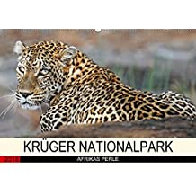 KRÜGER NATIONALPARK Afrikas Perle (Wandkalender 2018 DIN A2 quer): Faszinierende Tiere und Natur (Monatskalender, 14 Seiten ) (CALVENDO Tiere) [Kalender] [Apr 25, 2017] Woyke, Wibke