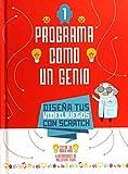 PROGRAMA COMO UN GENIO 1 VVKIDS (VIDEOJUEGOS) (VVKIDS LIBROS PARA SABER MÁS)