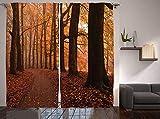 QRTQ Gardinen Blackout Vorhänge 3D gedruckt Vorhänge Herbstlicher Wald die Dreifachwebtechnologie Polyesterfaser gedruckt Vorhänge Blackout Wohnzimmer Schlafzimmer Wärmeisolierend 150x166cm