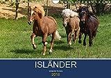 Isländer - icelandic horses (Wandkalender 2018 DIN A4 quer): Mit den Wikingerpferden durch das Jahr (Monatskalender, 14 Seiten ) (CALVENDO Tiere)