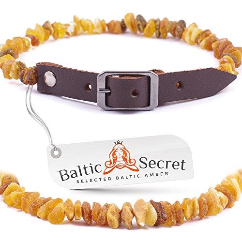 Bernsteinkette Hund, Zeckenschutz Hunde, Bernsteinhalsband hunde, Flöhe Hund, Zeckenschutz Katze von Baltic Secret