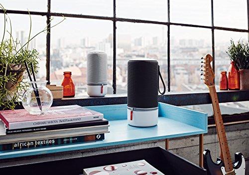 Libratone ZIPP MINI Wireless Multiroom Lautsprecher (360° Sound, WiFi, AirPlay 2, Bluetooth, 10h Akku) Cloudy Grey -