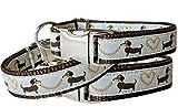 Hundehalsband Dackel Teckel braun Nylon Halsung Band Halsband Schnalle 29 - 44 cm x 2,0 cm