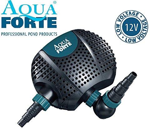 AQUAFORTE Filtre Pompe de Bassin O de 6500 12 V