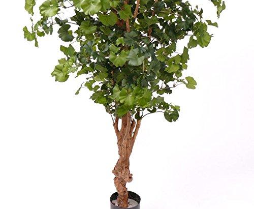 Ginkgo Sweet, mit 1144 Blätter, Höhe ca. 150cm – künstlicher Baum