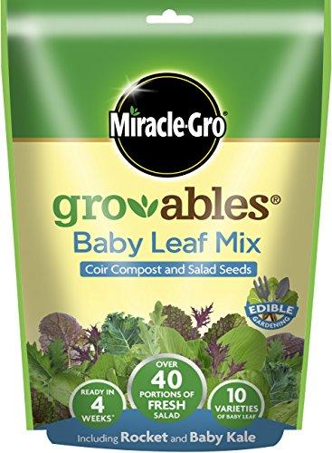 miracle-gro-119456-7-x-7-x-7-cm-diseno-de-plantas-color-amarillo-1