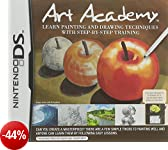 Art Academy: Learn Painting and Drawing Techniques with Step-by-Step Training (Nintendo DS) [Edizione: Regno Unito]
