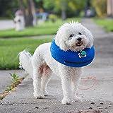 Roblue Hunde Schutzkragen Aufblasbar mit Schnalle Haustier Wiederherstellung Weiches Schutzhalsband Blau Oder Grau S M L XL